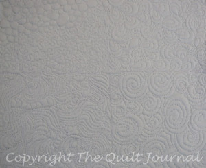 picture of a doodle sample free motion quilt stitch out