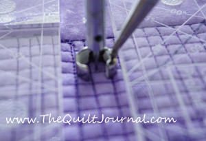 a picture showing a space to right of the hopping foot of the APQS George in the review of the Quilter's Groove
